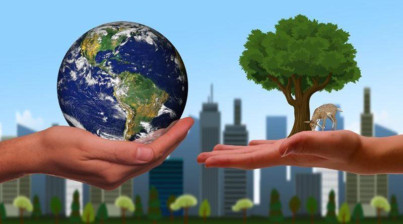 """Nachhaltigkeitsmarkt im Zuge von """"Kultur im Park"""""""