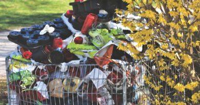 Richtig Müll trennen in Braunschweig
