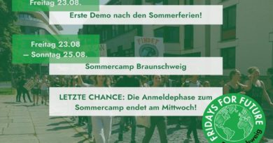 Fridays for Future Sommercamp