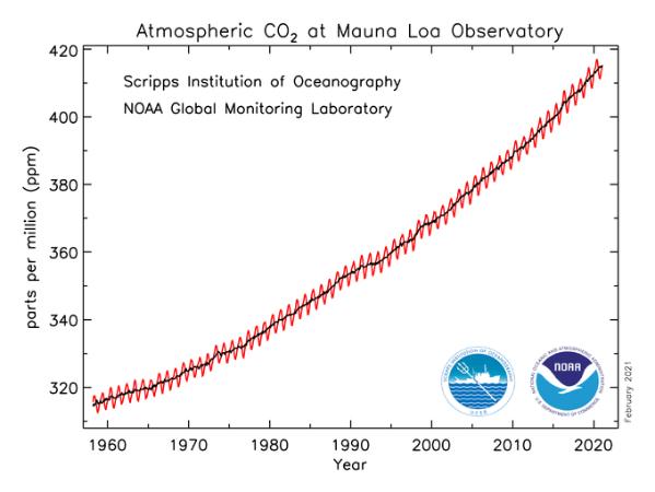Graph CO2-Konzentration - Mauna Loa Observatory