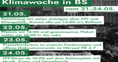 Klimawoche mit Fridays for Future in Braunschweig